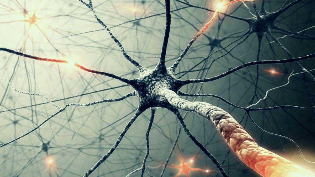 Νευρογενής στυτική δυσλειτουργία